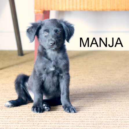 manja-with-name-square